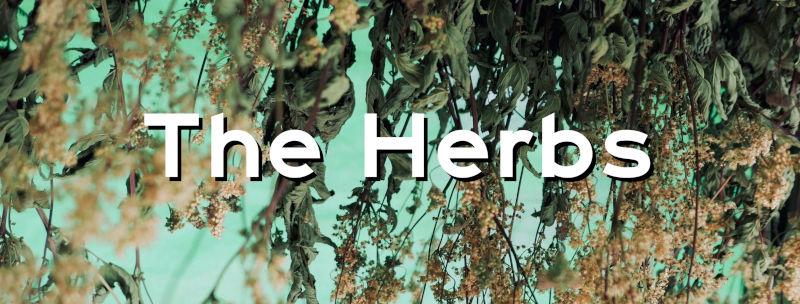 Theherbs.jpg